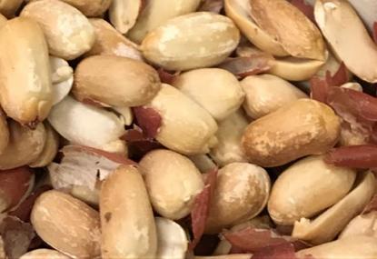 תמונה של בוטנים קלויים ללא מלח - 100 גרם