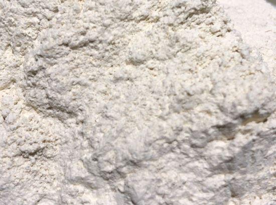 תמונה של אבקת שום - 100 גרם