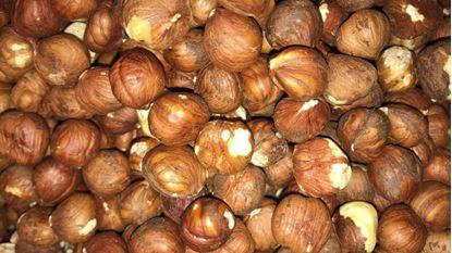 תמונה של אגוז לוז בונדוק טבעי - 100 גרם