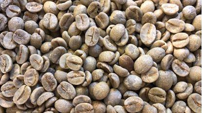 תמונה של קפה לא קלוי סופר פרימיום - 100 גרם