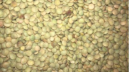 תמונה של עדש ירוק - 100 גרם